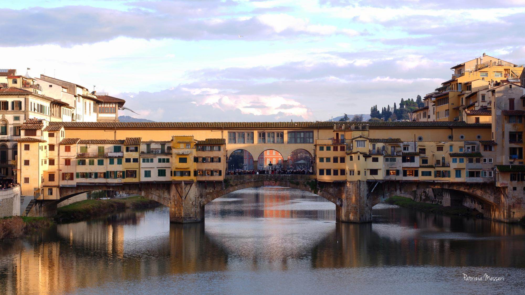 Private guided walking tour in Florence